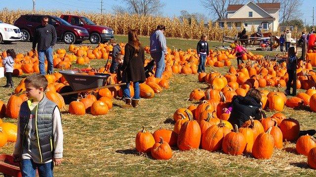 Northern Virginia Fall Festivals