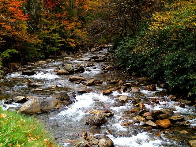Fall Hiking Fairfax County